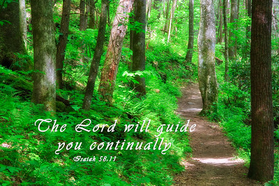 The Lord will guide you continually
