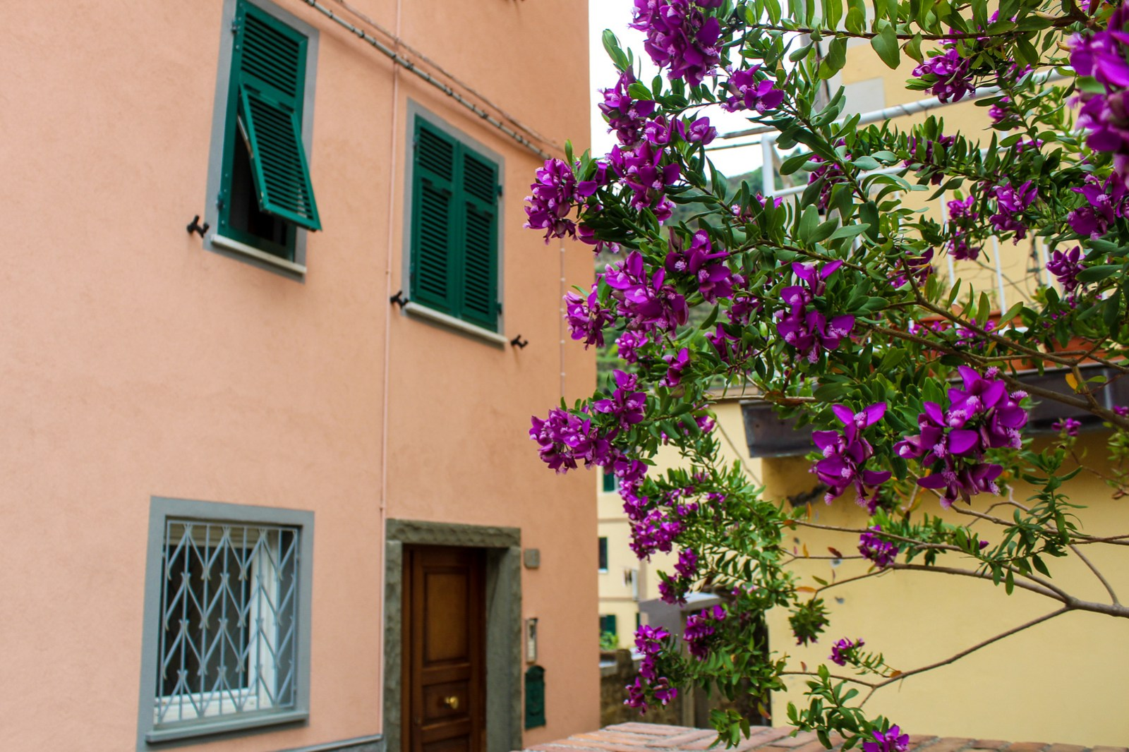 the best place to stay in cinque terre will probably be a small bnb