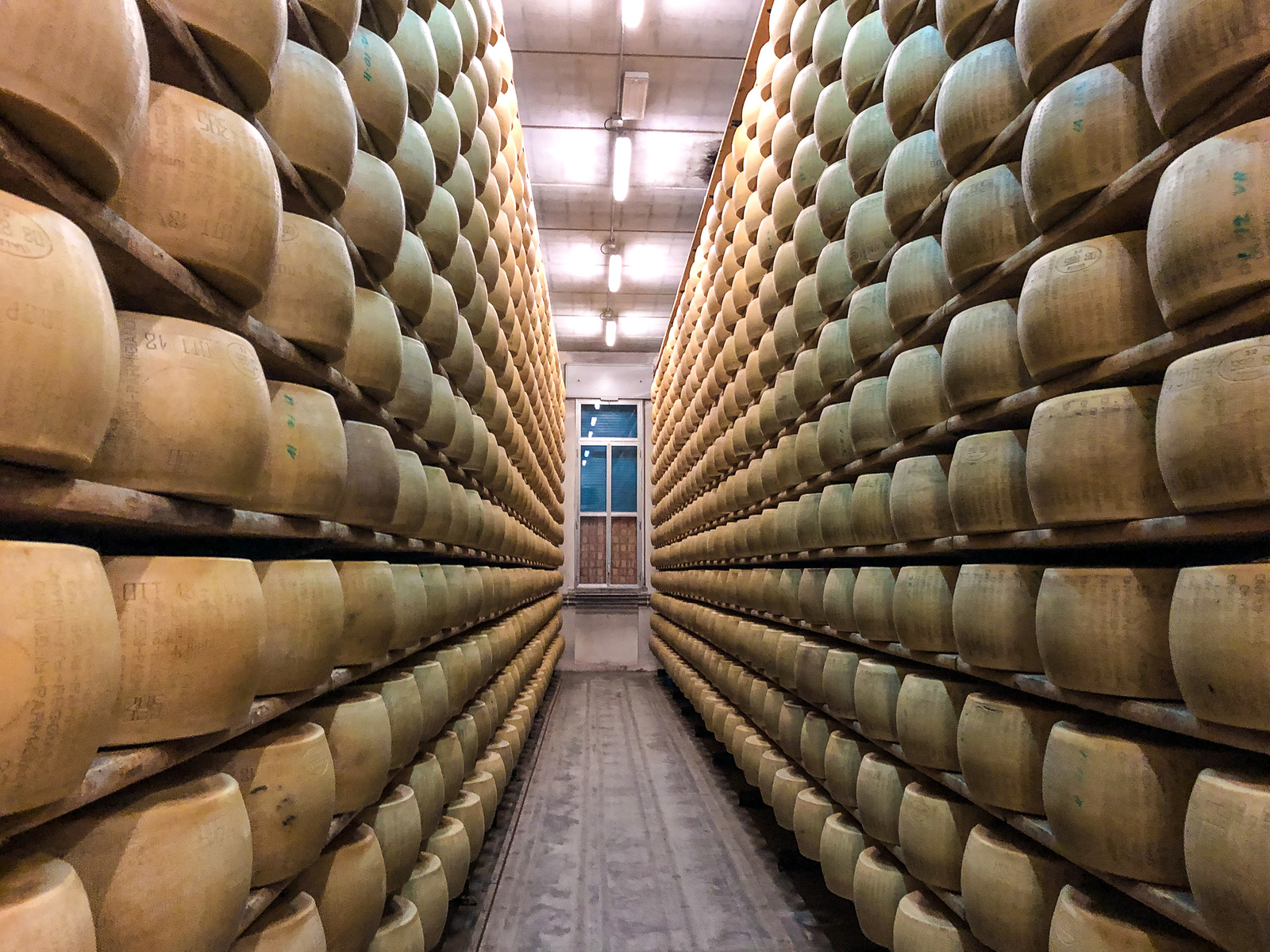Visiting parma cheese factory is the best time