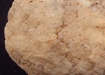 #7077 Partial Quartz Geode (214 g)