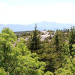 Mt. Cardigan 88