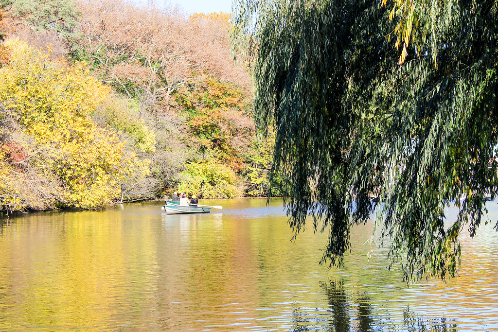 not sure how to find inner peace with yourself? go to central park