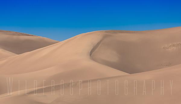Top of the Dunes