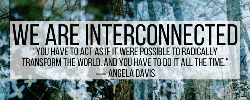"""We are Interconnected. """"You have to act as if it were possible to radically transform the world. And you have to do it all the time."""" -Angela Davis"""