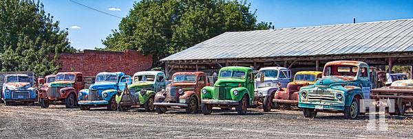 Old colorful trucks in Washington State
