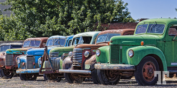 Old rusty and colorful trucks in Spargue, Washington