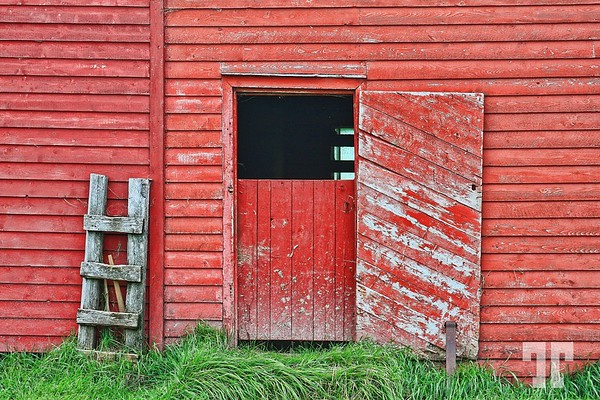 Red barn in Trout Village, Newfoundland