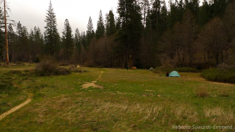 Pine Valley Camp