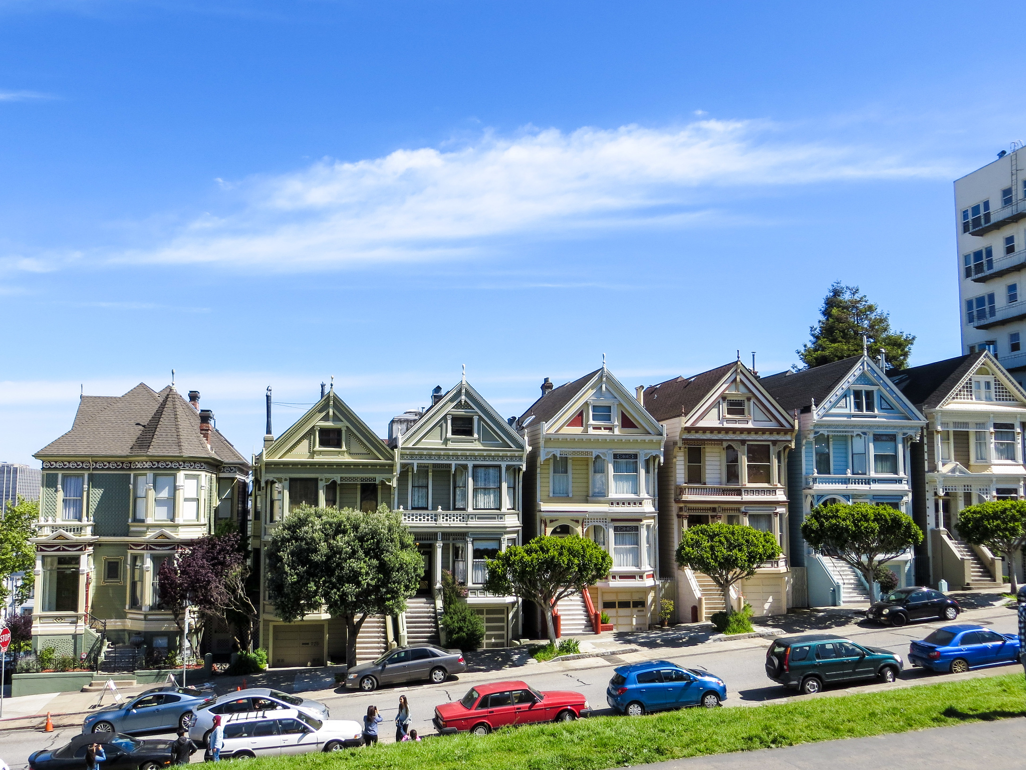 don't miss the painted ladies on your san francisco 2 days trip