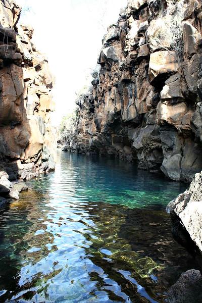 参观加拉帕戈斯群岛——加拉帕戈斯群岛——加拉帕戈斯群岛