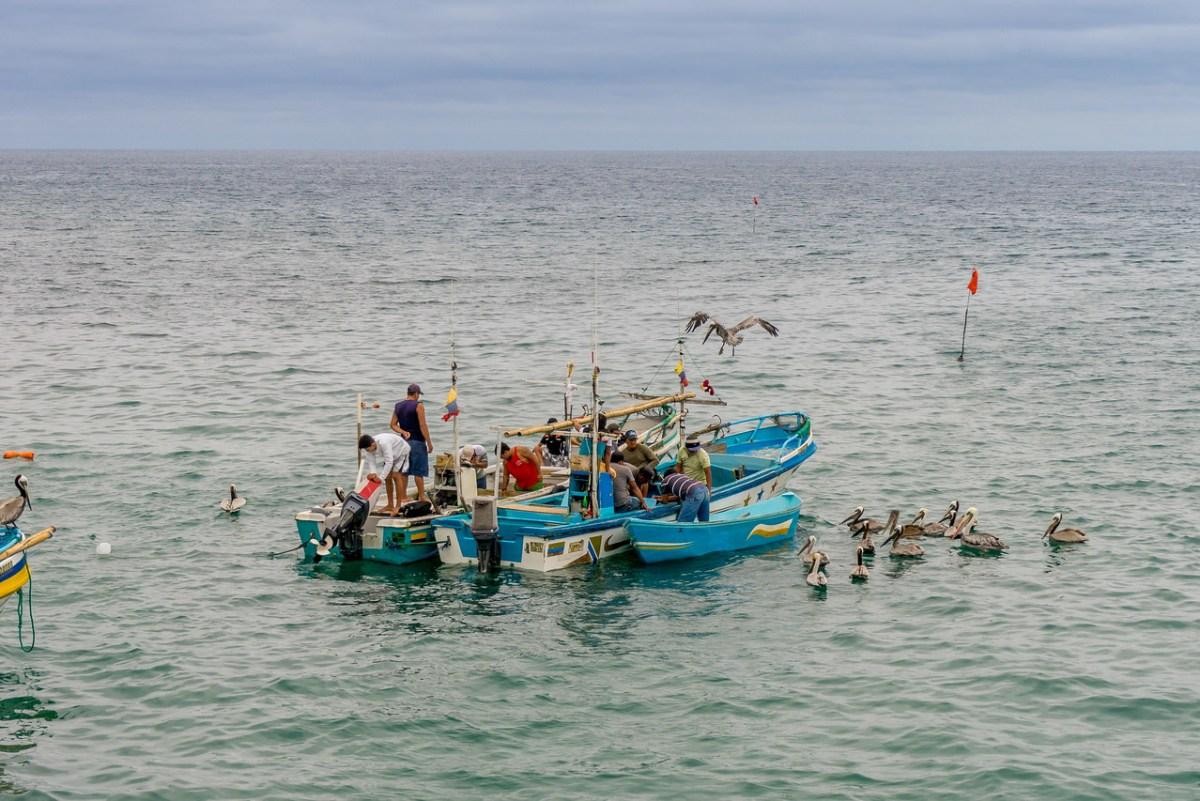 fiskere puerto lopez