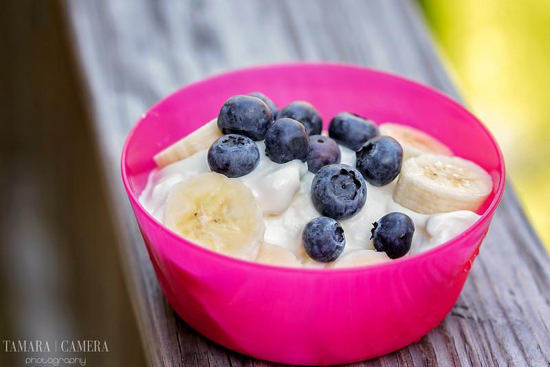Homemade Vanilla Frozen Yogurt With Berries and Bananas