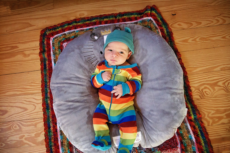 newborn on Boppy Newborn Lounger