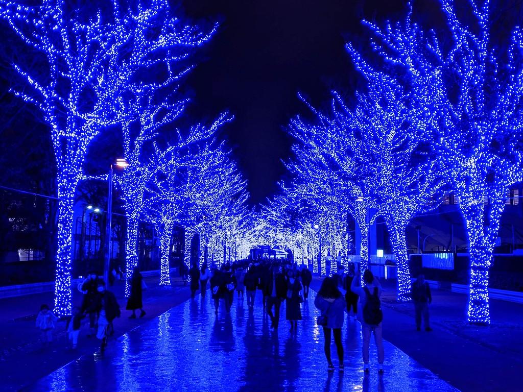 Shibuya Blue Cave Winter Illumination