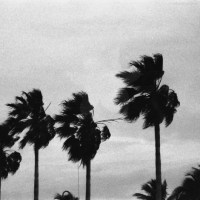 8 Freeport, The Bahamas in Black and White