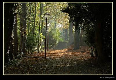 herfstsfeer in het abdijpark