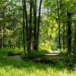 Stadtradeln tour through the Siebentischwald
