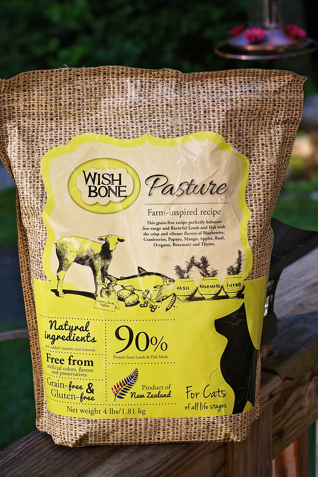 Looking to switch to a new cat food? We LOVE Wishbone Pasture. Why? Here are three major reasons to make the switch #ad #addictionpetfoods #wishbonepetfoods