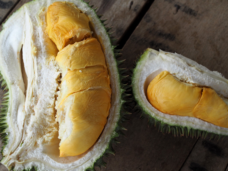 D101 durian guide