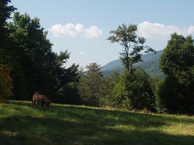 Behind me is Tennessee