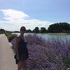 At Gravelines Aire. Our Al and lovely Lavender