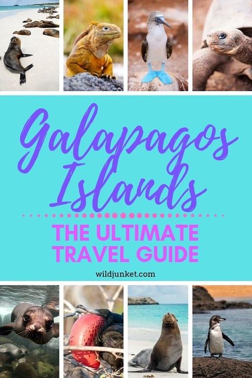 参观加拉帕戈斯群岛群岛群岛的岛屿……