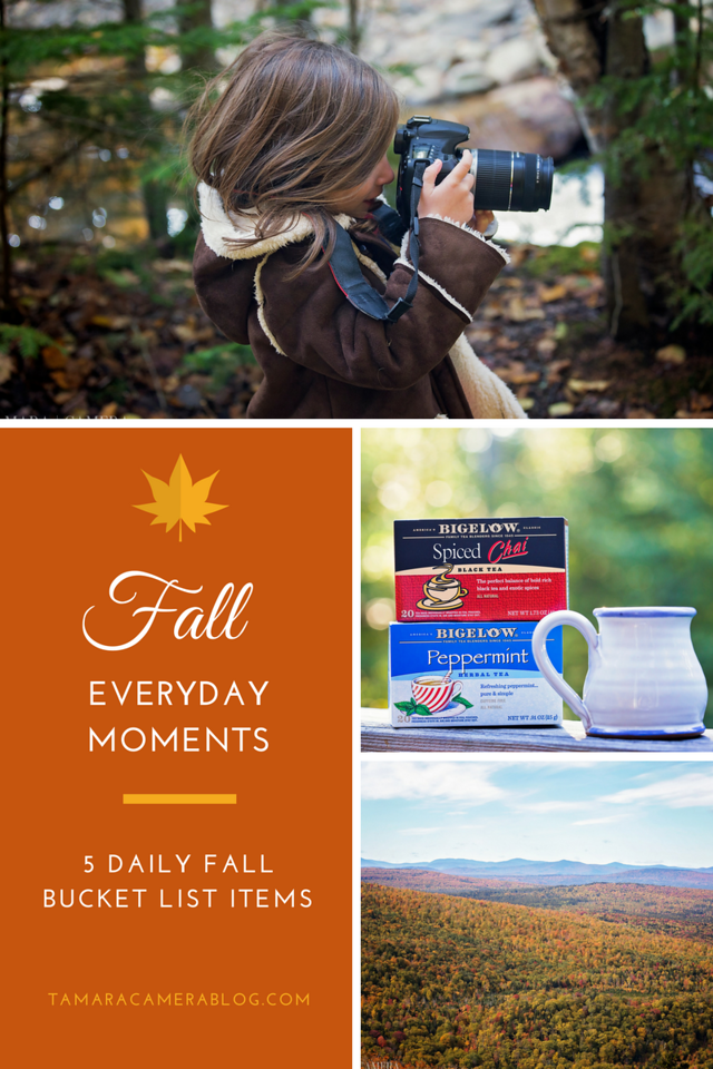 Everyone talks about a fall bucket list, and although I make a one every year, here are the five things I like to do DAILY. So much to enjoy! #ad #TeaProudly
