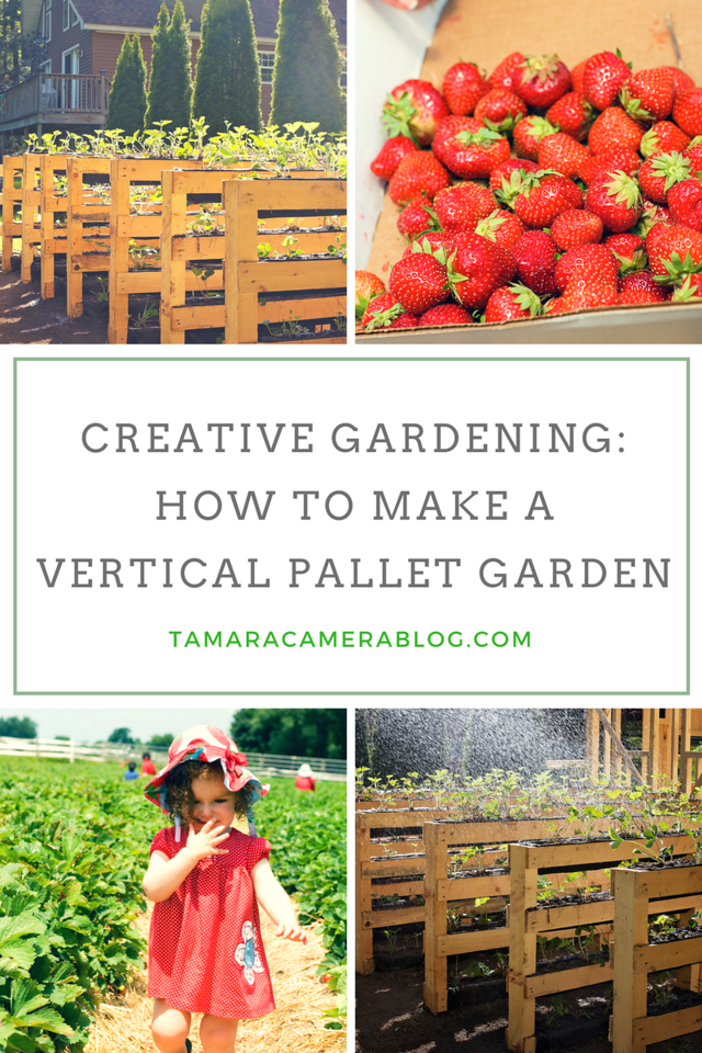 This is a creative & rather genius way to garden w/ vertical pallets. It's easy to do, fun, & beautiful in your yard #DIY #Gardening #ad #ForWhatMattersMost