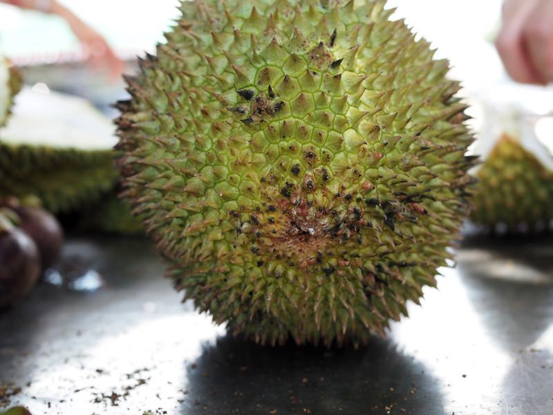 best johor durian