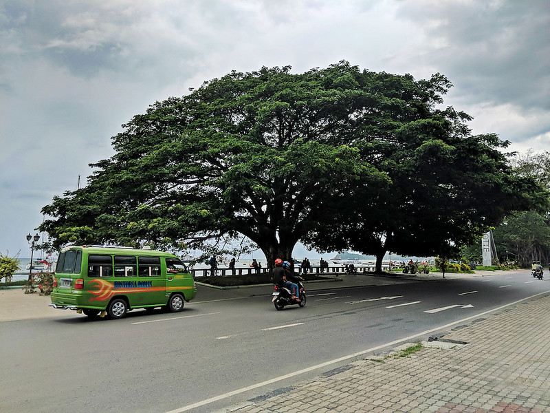 Travel Guide to Dili - microlet on the road