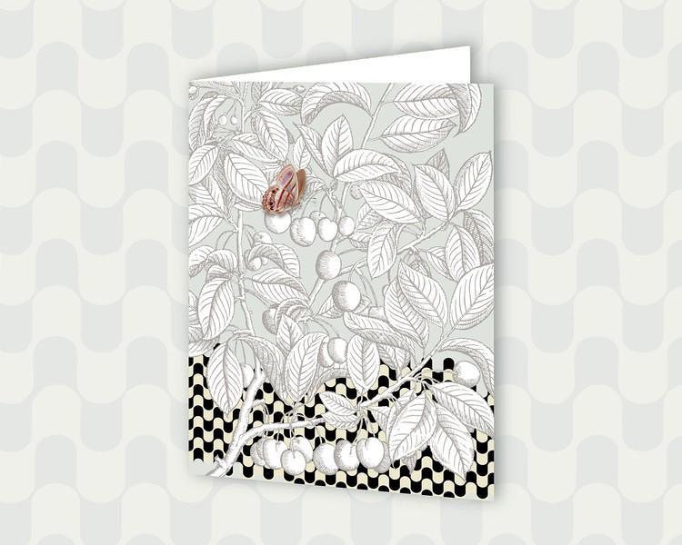 detailed botanical cards PictrixDesign