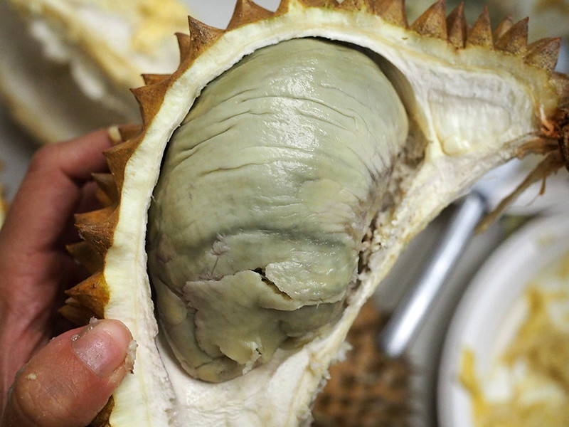 mailing fresh durian