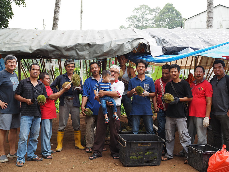 Hulu Langat Durian