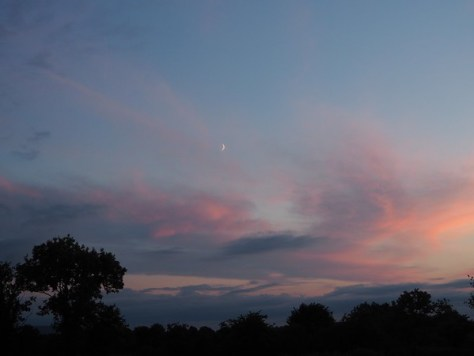 Wispy clouds washed pink by sunset with crescent moon.