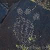 Almost looks like a paw print - bear? Mountain lion?