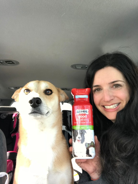 Dogs are just like us - they need some New Year's Resolutions to stay in tip top shape for the new year! Find out how Milk-Bone's Advanced Care Line of products can help your dog get into great routines - with your help - and be happy! #ad #MilkBone #DogsAreMore #MilkBoneatTarget
