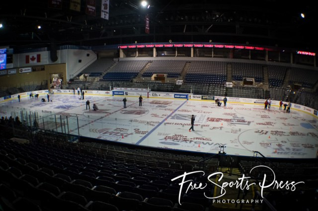 Paint the Rink (2016)