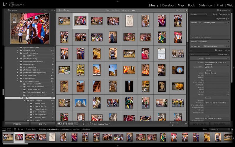 Lightroom Grid view
