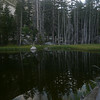 Some beautiful still ponds along Horse Creek