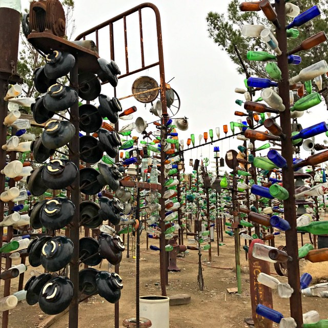bottle trees at elmers bottle tree ranch