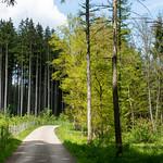 Ride through the Westliche Wälder