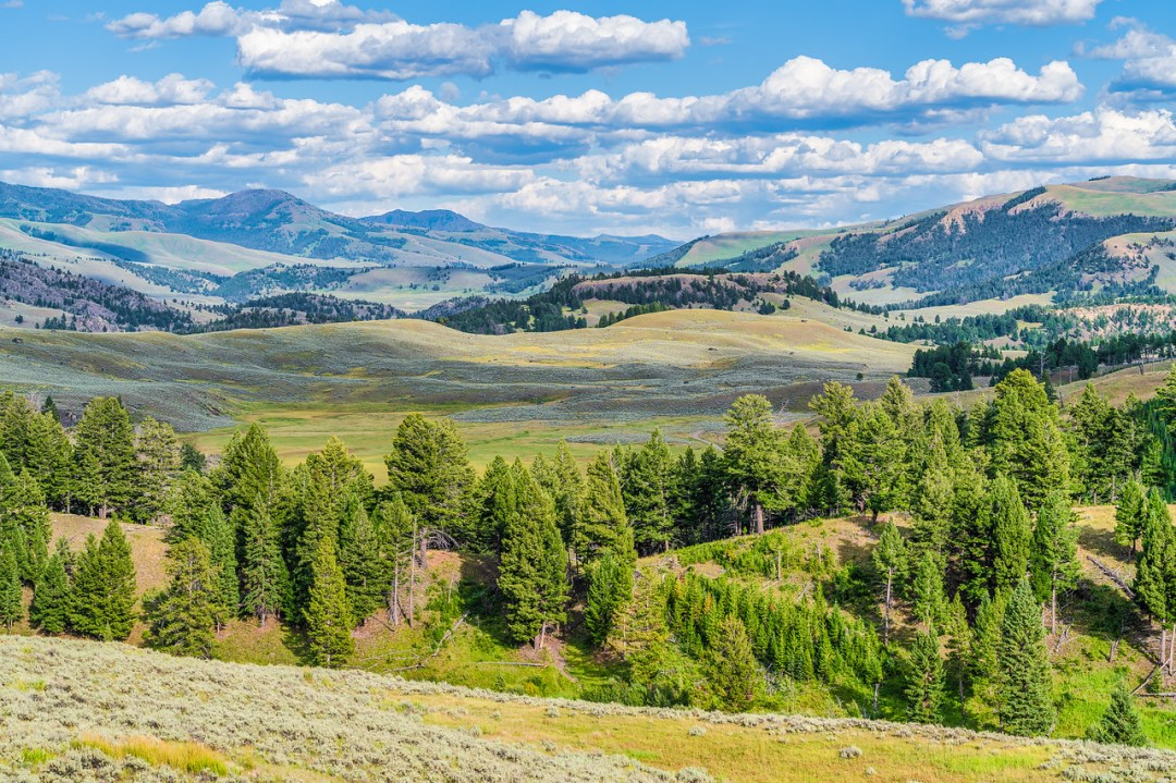 Lamar Valley Landscape Photography Yellowstone National Park