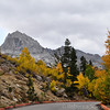 Colors at the South Lake trailhead