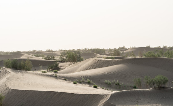 Sanddunes in the Karakum