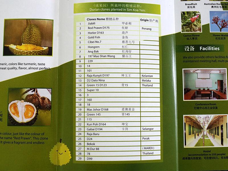 Melaka durian