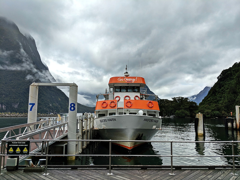 8 Day New Zealand Road Trip - Go Orange Milford Sound Cruise