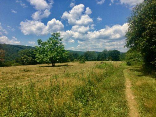 kent connecticut appalachian trail volunteers