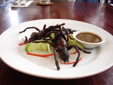 Image result for tarantulas dish