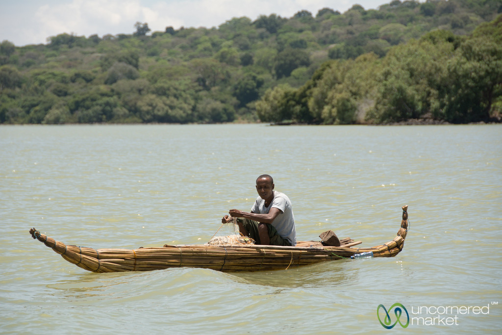 Fisherman in Traditional Papyrus Boat on Lake Tana - Bahir Dar, Ethiopia