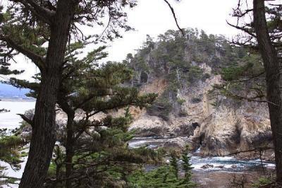 Parque Estatal Punta de los Lobos   punto, Espacio natural ...